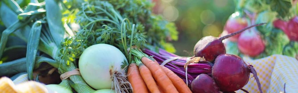 beets-carrots-close-up-533360 (1)